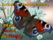 Online Social Butterfly