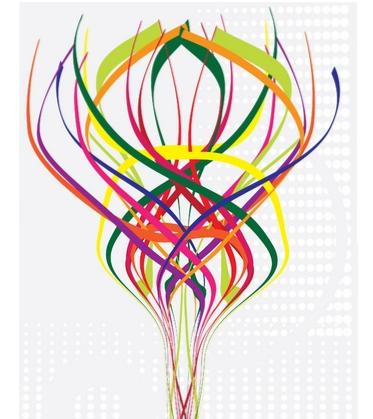 Spiral Dynamics Coaching