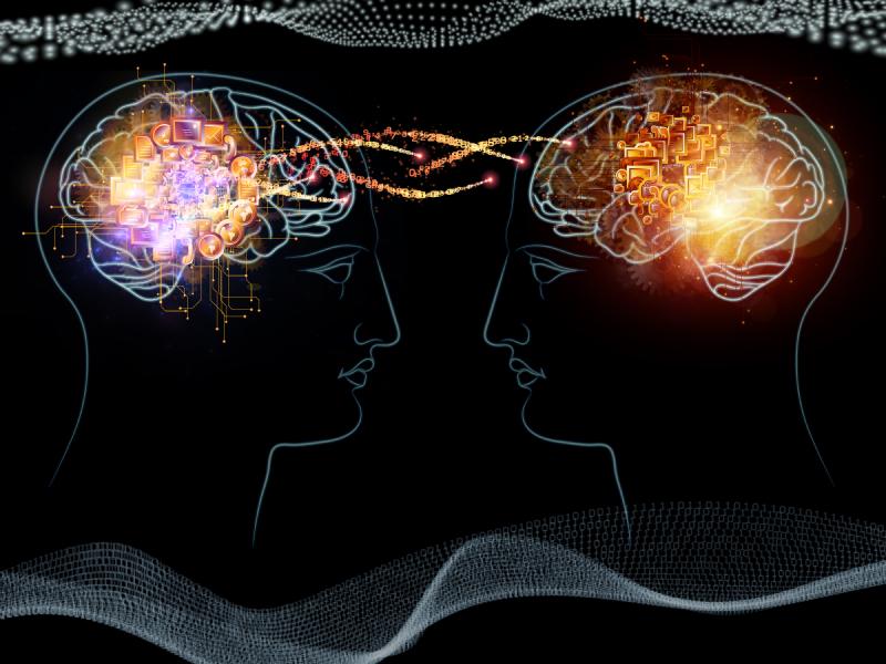 neuroplasticity exercises
