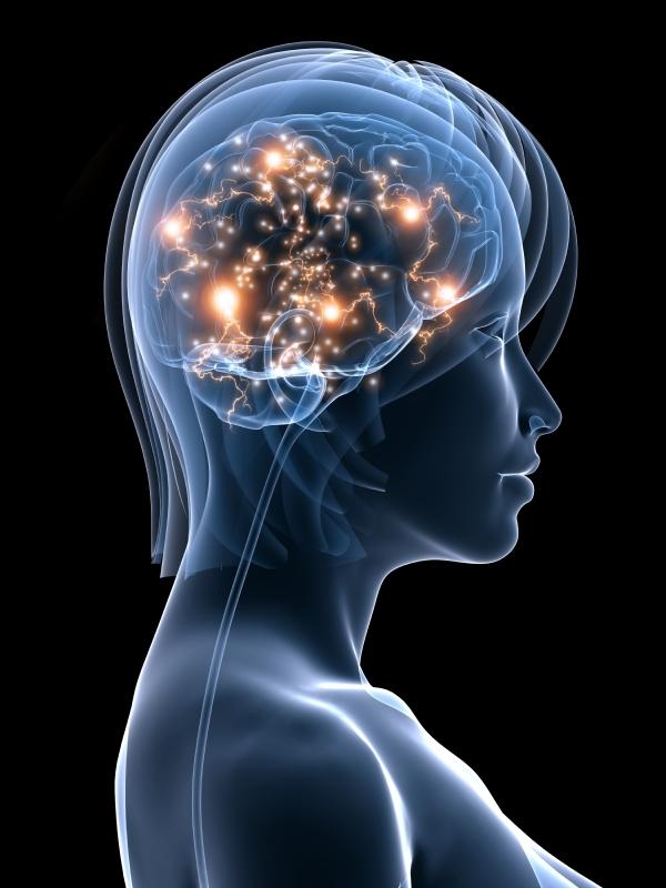 brain science behind coaching