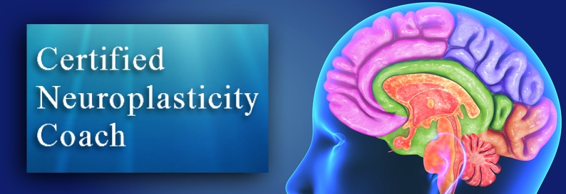 Certified Neuroplasticity Coach