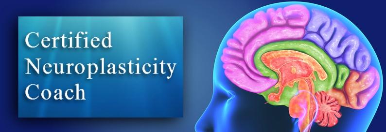 Certified Neuroplasticity Coach
