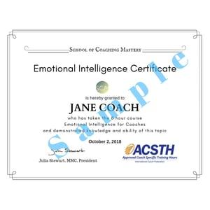 Jane Coach Emotional Intelligence Certificate